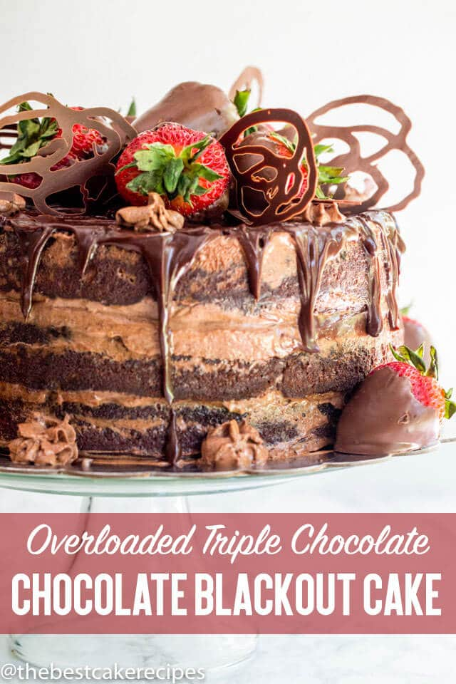 This amazing Chocolate Blackout Cake has 3 large cake layers, chocolate custard pudding filling, whipped chocolate ganache and chocolate covered strawberries. A naked cake recipe like no other!